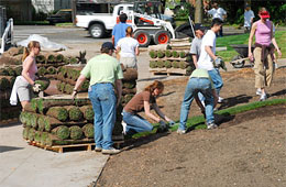 Group of volunteers laying sod